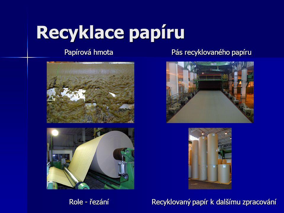 Recyklace papíru Papírová hmota Pás recyklovaného papíru Role - řezání