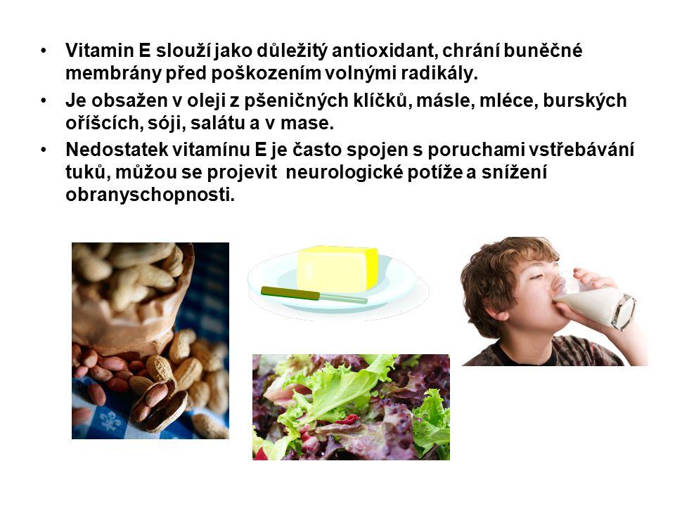 Vitamin E slouží jako důležitý antioxidant, chrání buněčné membrány před poškozením volnými radikály.