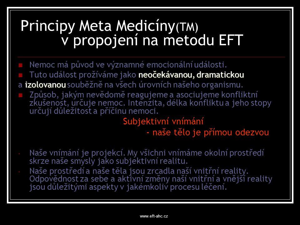Principy Meta Medicíny(TM) v propojení na metodu EFT