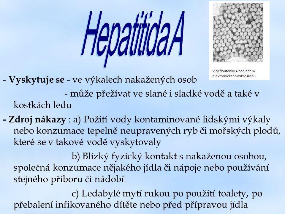 Hepatitida A - Vyskytuje se - ve výkalech nakažených osob