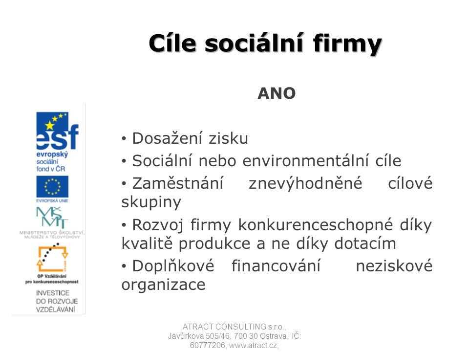 Cíle sociální firmy ANO Dosažení zisku