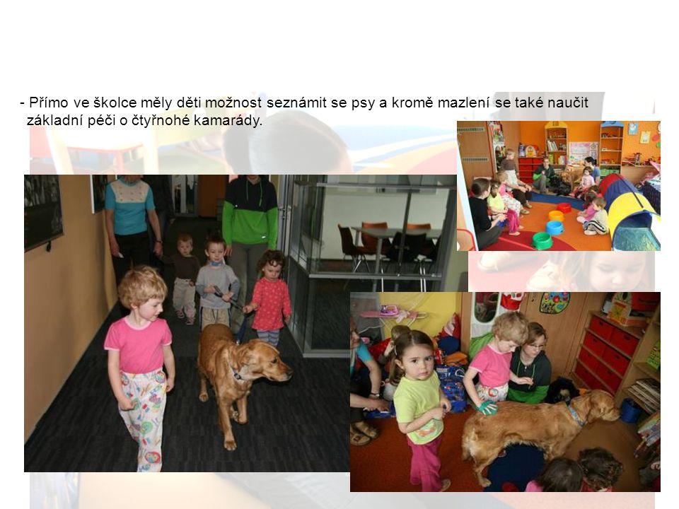 Cannis terapie Přímo ve školce měly děti možnost seznámit se psy a kromě mazlení se také naučit.