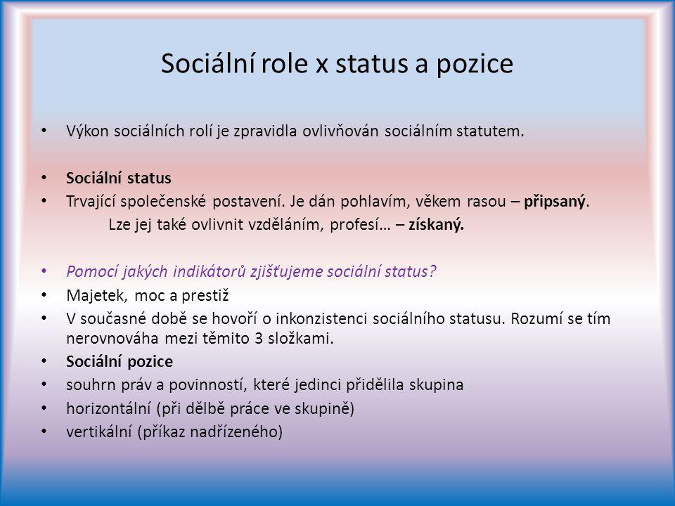 Sociální role x status a pozice