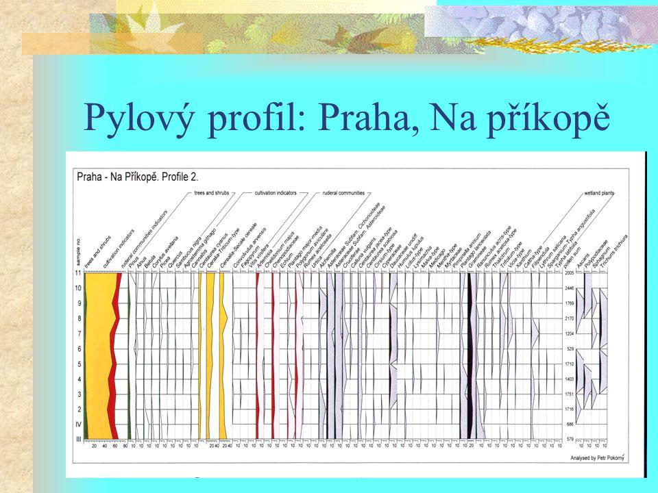 Pylový profil: Praha, Na příkopě