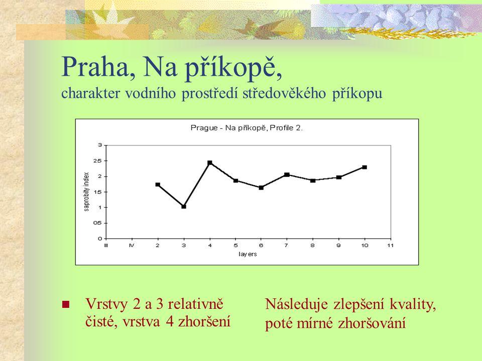 Praha, Na příkopě, charakter vodního prostředí středověkého příkopu