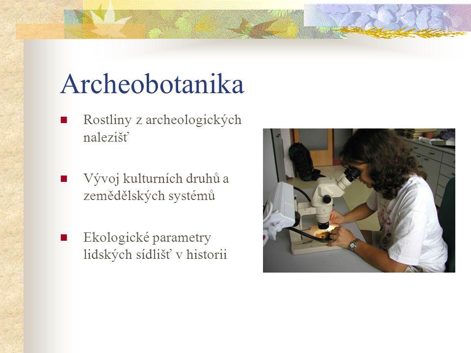 Archeobotanika Rostliny z archeologických nalezišť