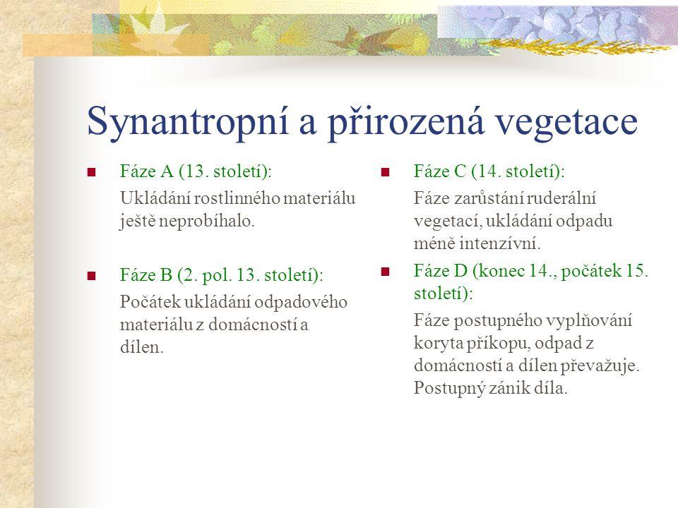 Synantropní a přirozená vegetace