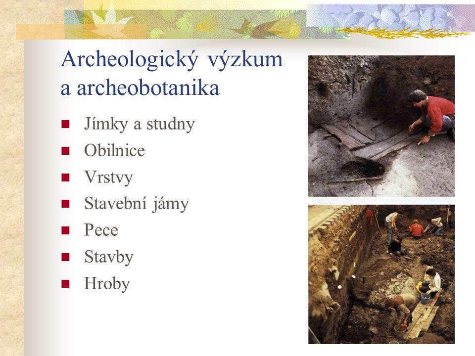 Archeologický výzkum a archeobotanika