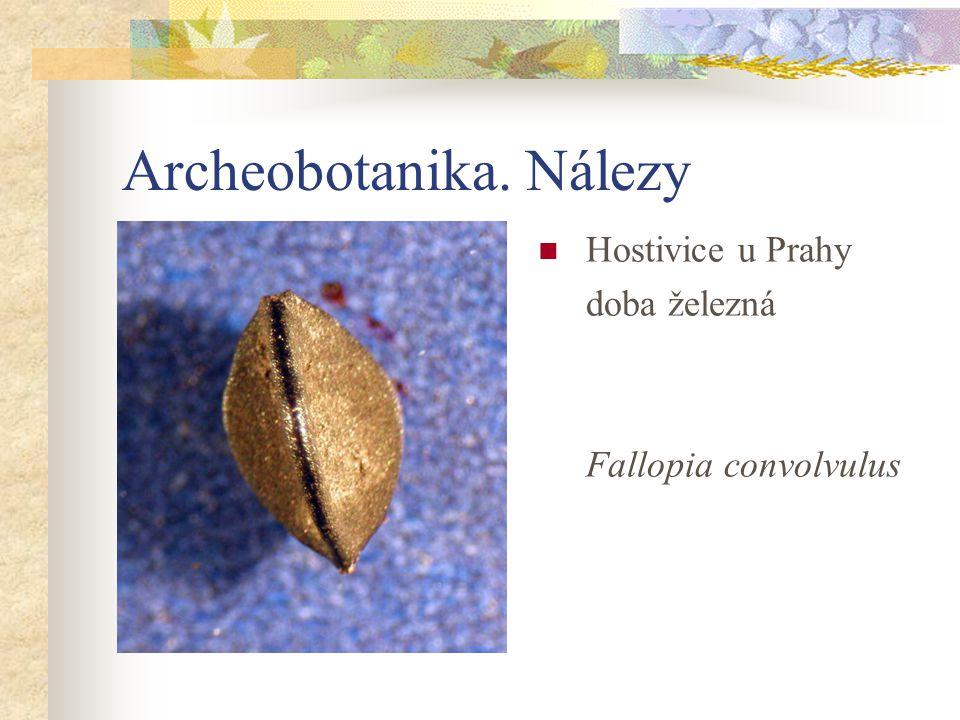 Archeobotanika. Nálezy
