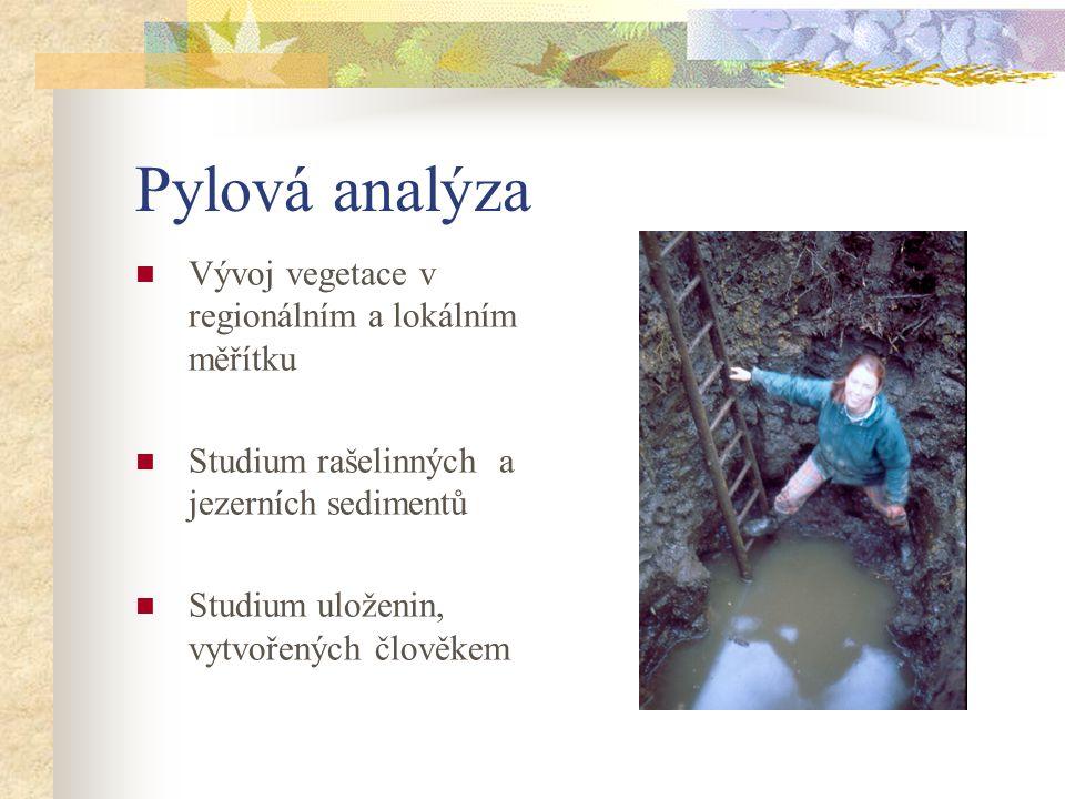 Pylová analýza Vývoj vegetace v regionálním a lokálním měřítku