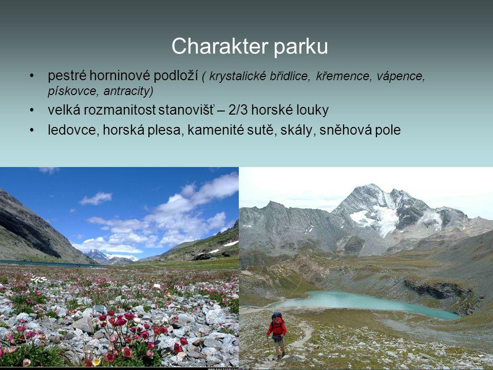 Charakter parku pestré horninové podloží ( krystalické břidlice, křemence, vápence, pískovce, antracity)
