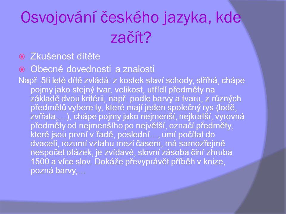 Osvojování českého jazyka, kde začít