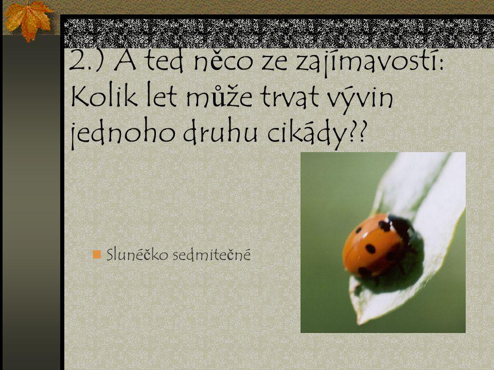 2.) A ted něco ze zajímavostí: Kolik let může trvat vývin jednoho druhu cikády