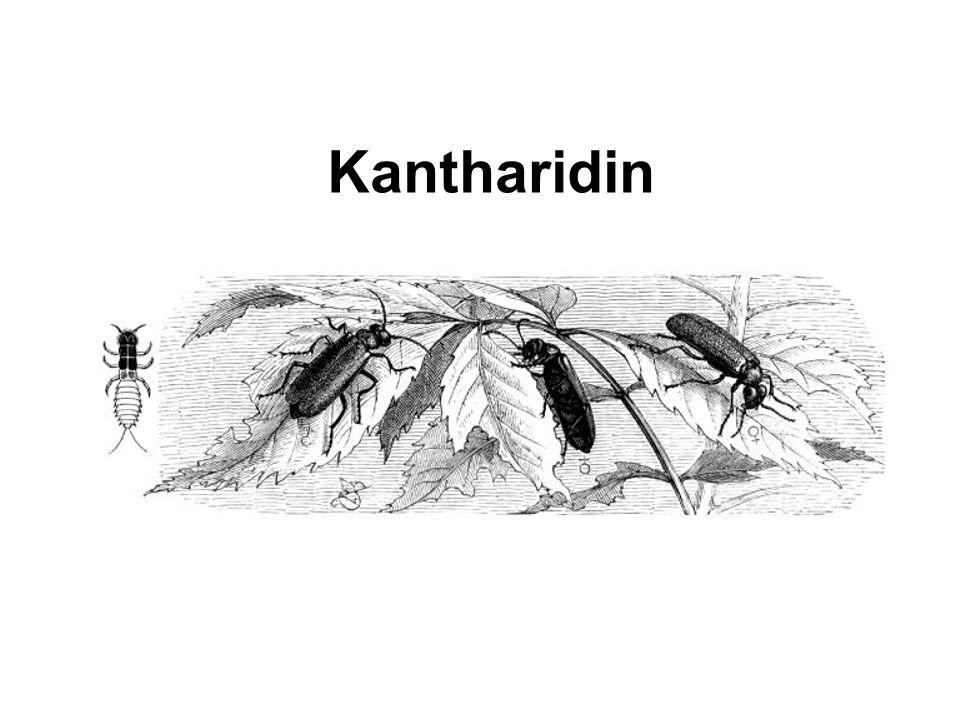 Kantharidin