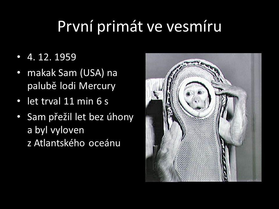 První primát ve vesmíru