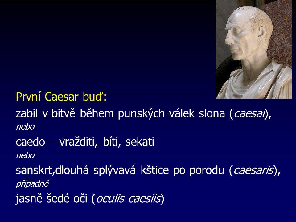 zabil v bitvě během punských válek slona (caesai),