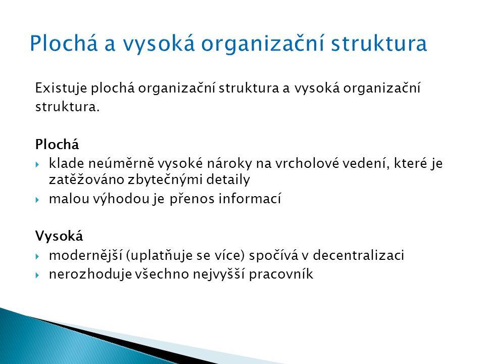 Plochá a vysoká organizační struktura