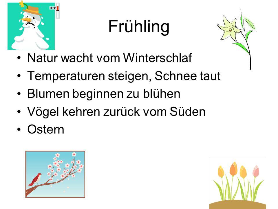 Frühling Natur wacht vom Winterschlaf