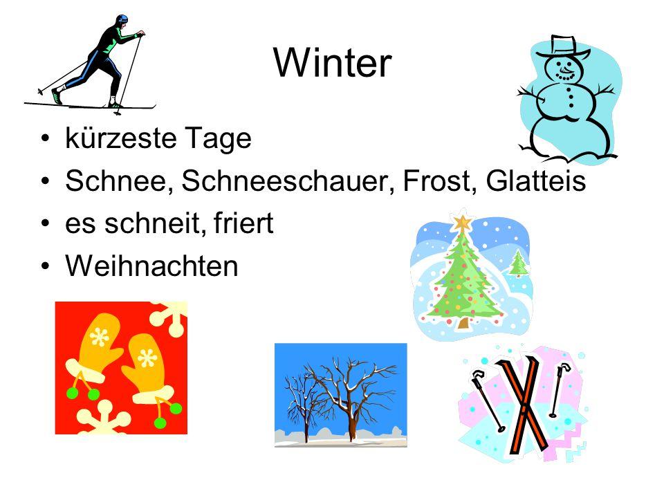 Winter kürzeste Tage Schnee, Schneeschauer, Frost, Glatteis