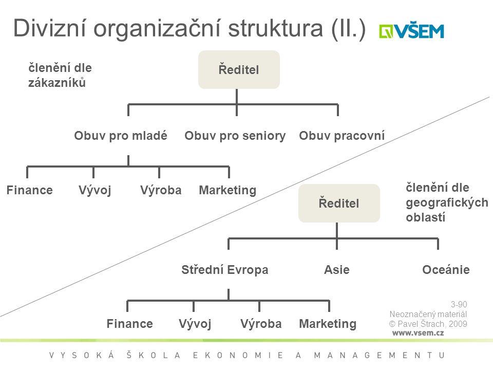 Divizní organizační struktura (II.)