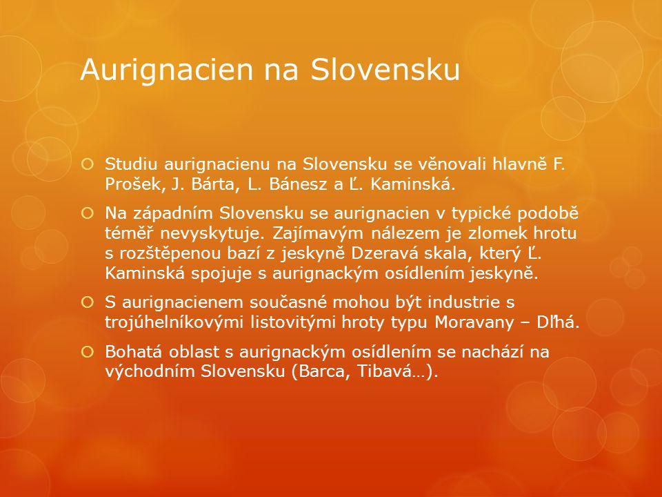 Aurignacien na Slovensku
