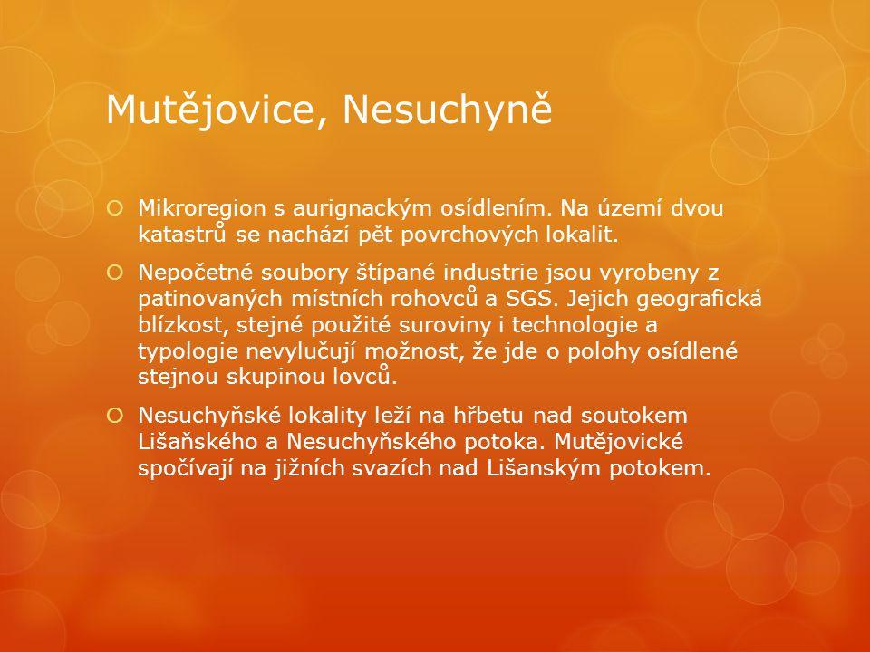 Mutějovice, Nesuchyně Mikroregion s aurignackým osídlením. Na území dvou katastrů se nachází pět povrchových lokalit.
