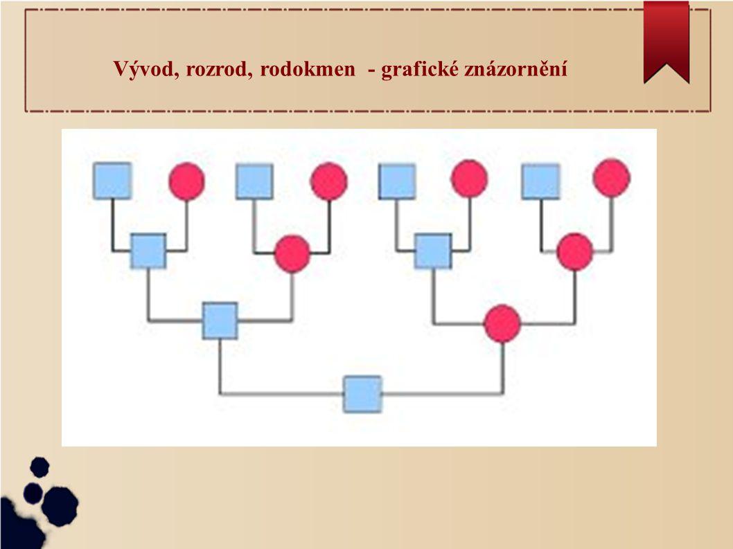 Vývod, rozrod, rodokmen - grafické znázornění