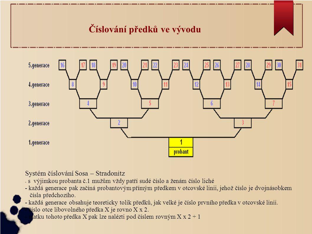 Číslování předků ve vývodu