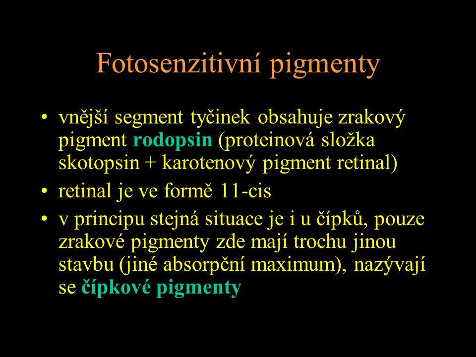 Fotosenzitivní pigmenty