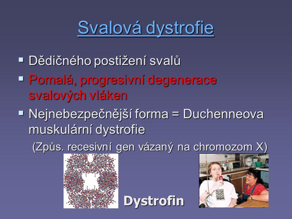 Svalová dystrofie Dědičného postižení svalů