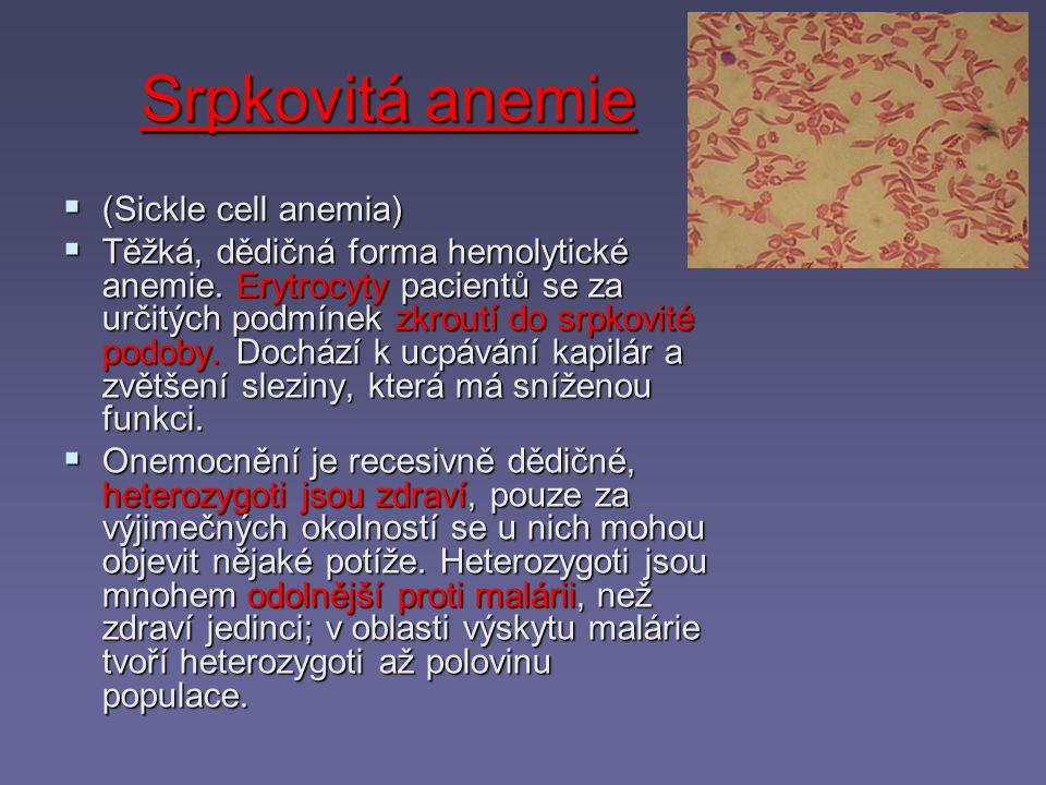 Srpkovitá anemie (Sickle cell anemia)