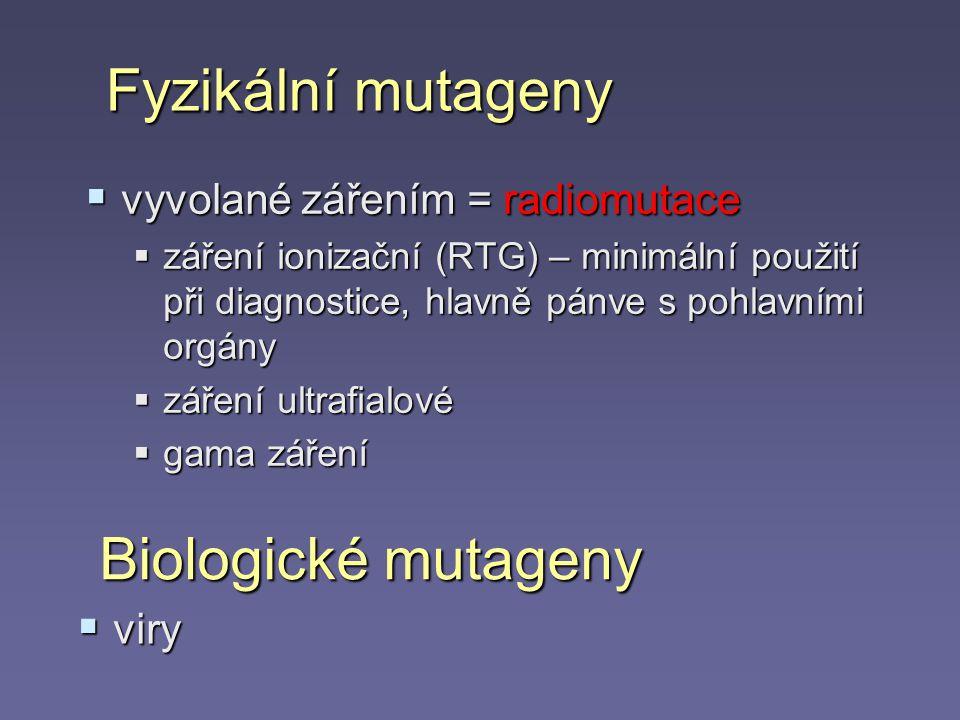 Fyzikální mutageny Biologické mutageny vyvolané zářením = radiomutace