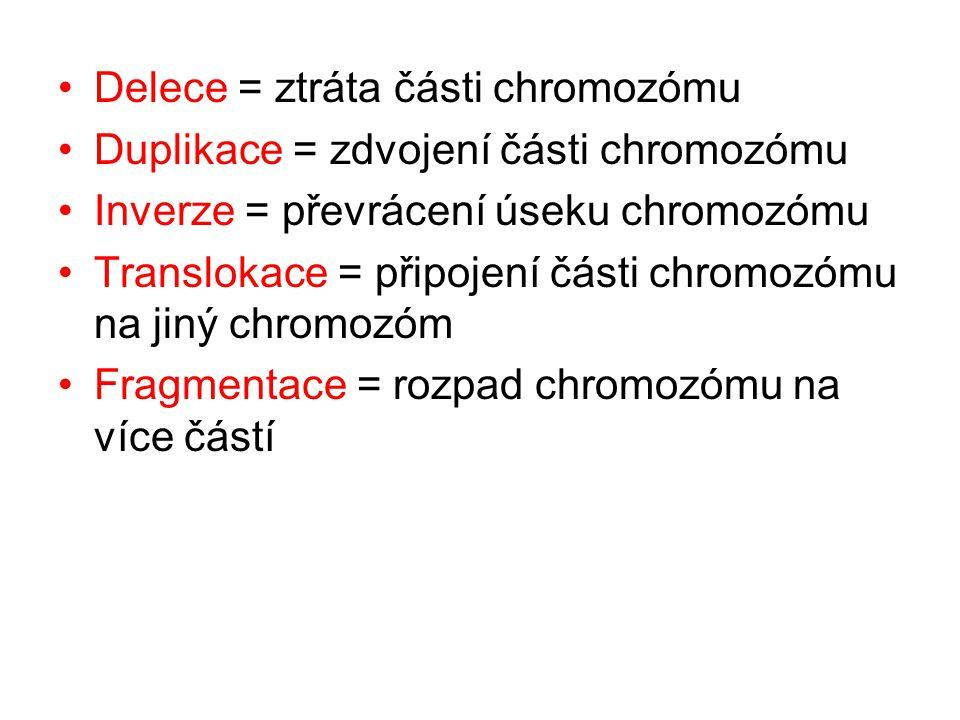 Delece = ztráta části chromozómu