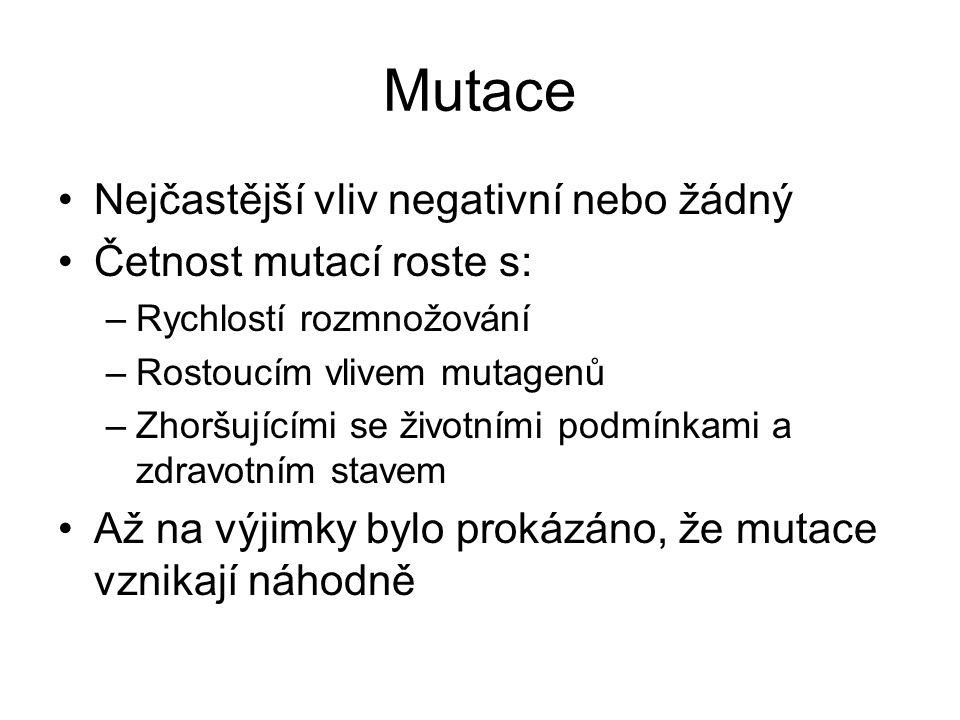Mutace Nejčastější vliv negativní nebo žádný Četnost mutací roste s: