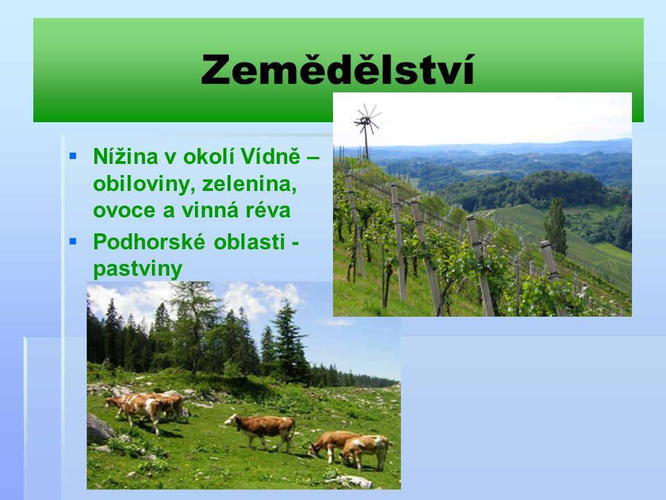Zemědělství Nížina v okolí Vídně – obiloviny, zelenina, ovoce a vinná réva.