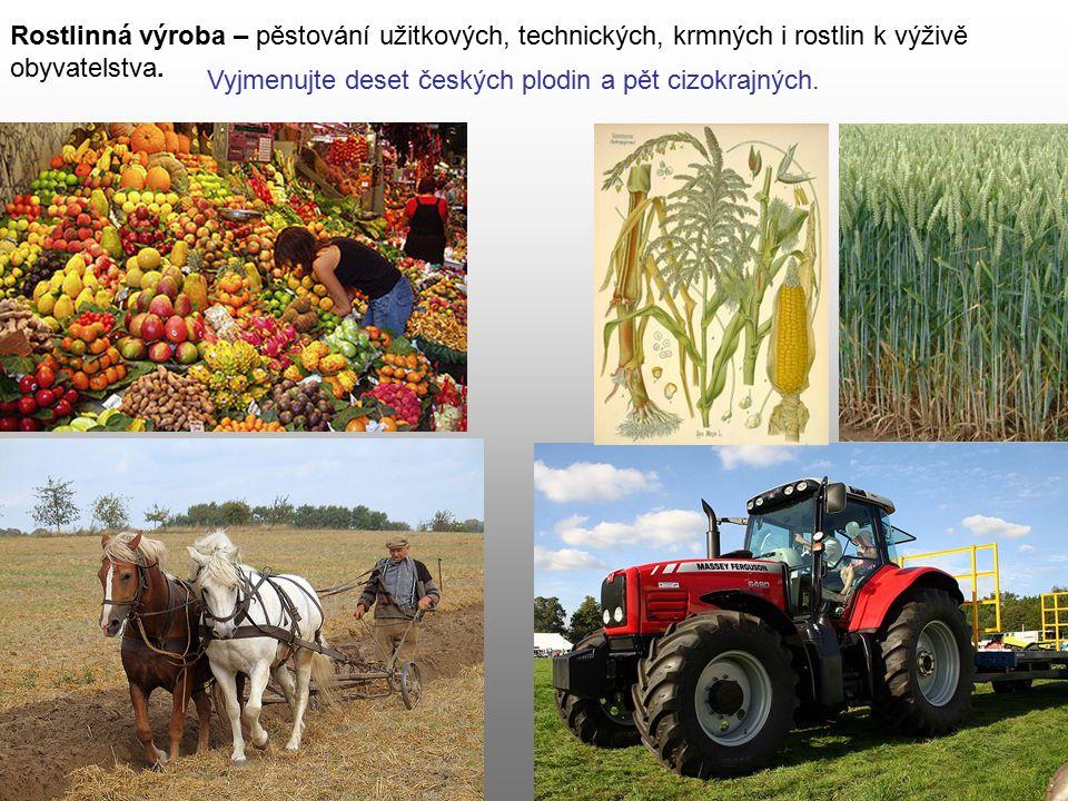 Rostlinná výroba – pěstování užitkových, technických, krmných i rostlin k výživě obyvatelstva.