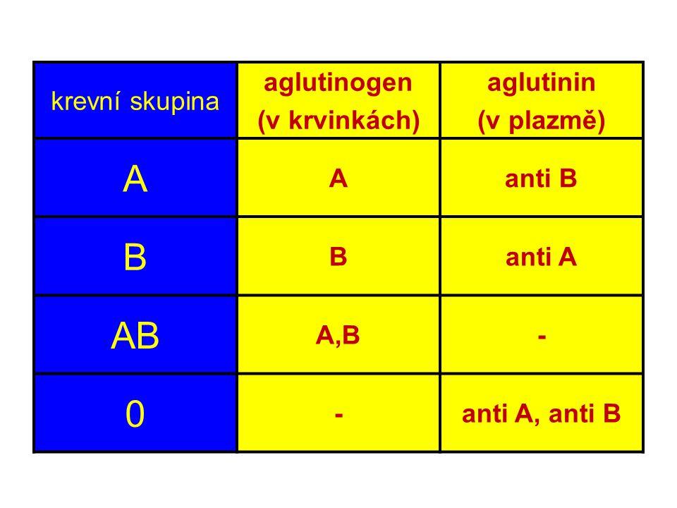 A B AB krevní skupina aglutinogen (v krvinkách) aglutinin (v plazmě)