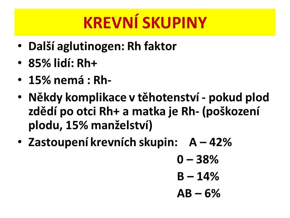 KREVNÍ SKUPINY Další aglutinogen: Rh faktor 85% lidí: Rh+