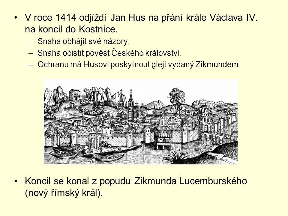 Koncil se konal z popudu Zikmunda Lucemburského (nový římský král).
