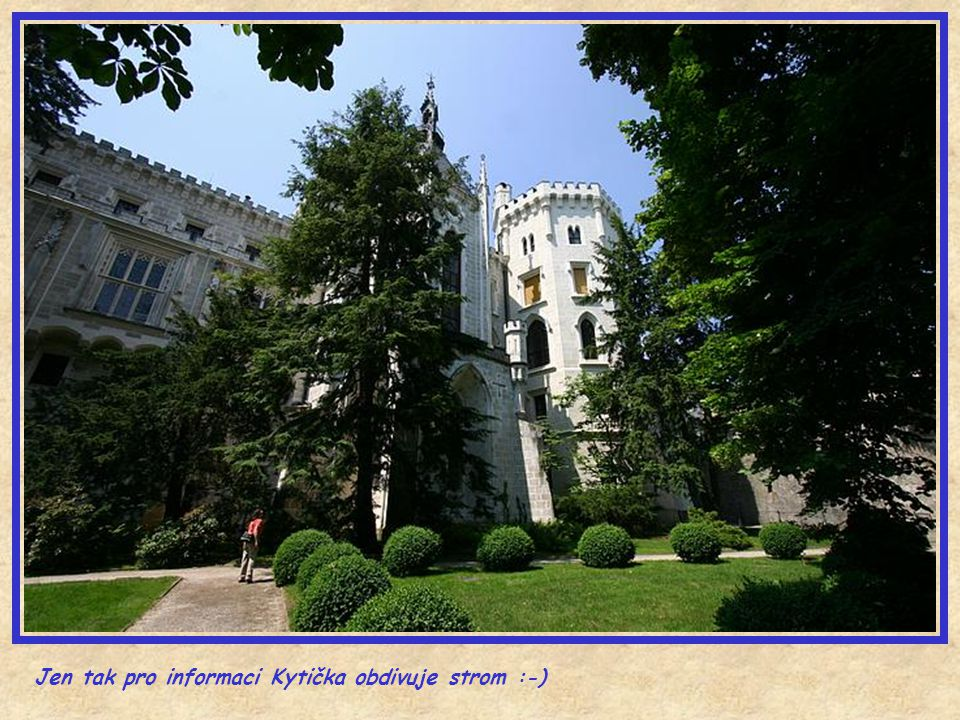 Jen tak pro informaci Kytička obdivuje strom :-)