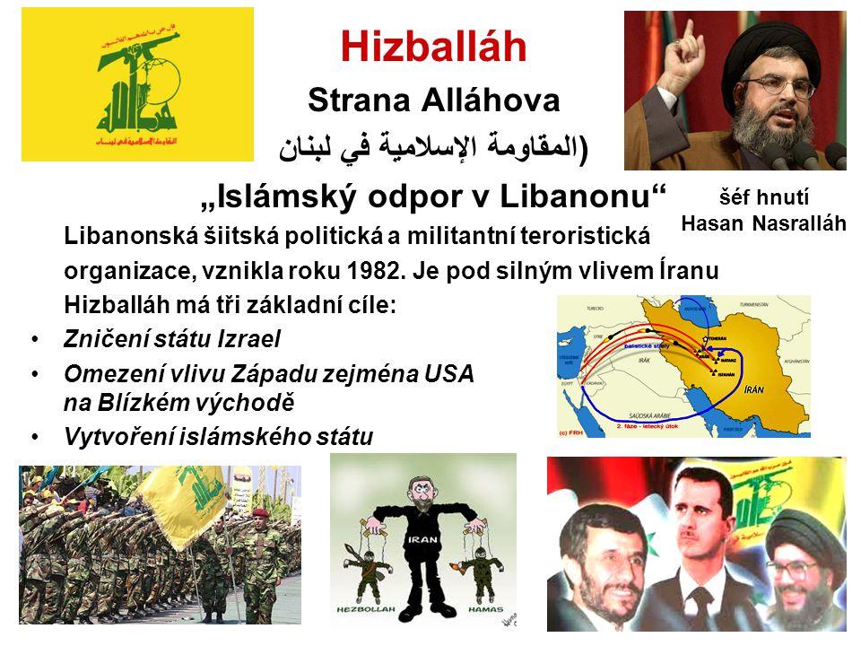 المقاومة الإسلامية في لبنان)