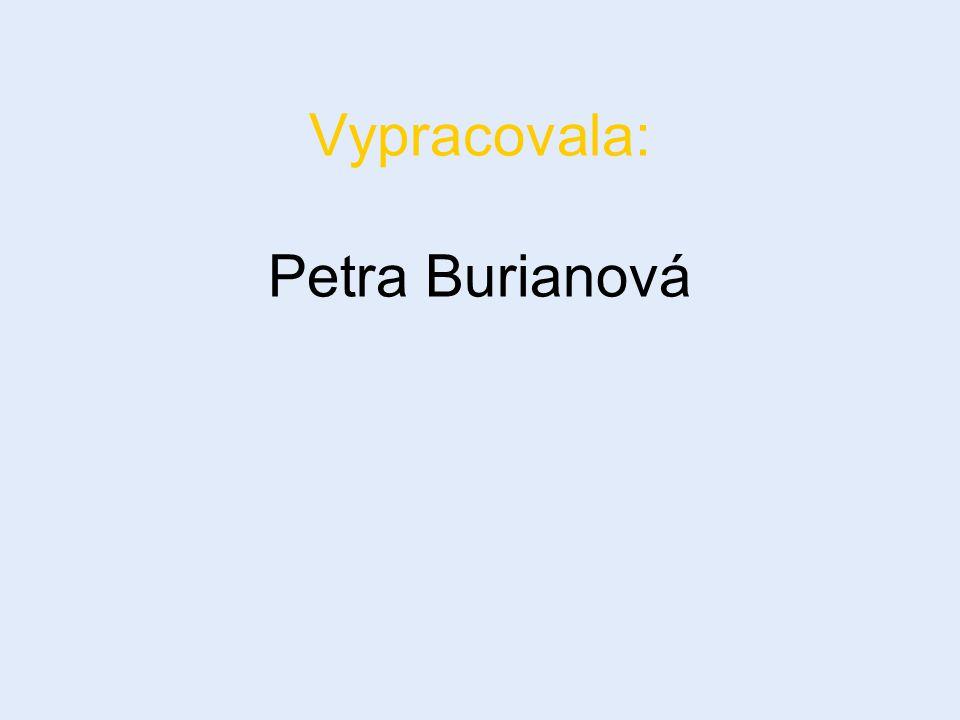 Vypracovala: Petra Burianová