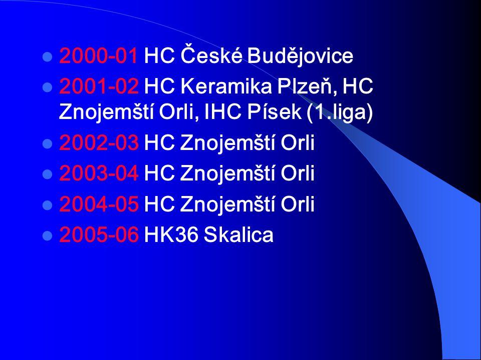 2000-01 HC České Budějovice 2001-02 HC Keramika Plzeň, HC Znojemští Orli, IHC Písek (1.liga) 2002-03 HC Znojemští Orli.