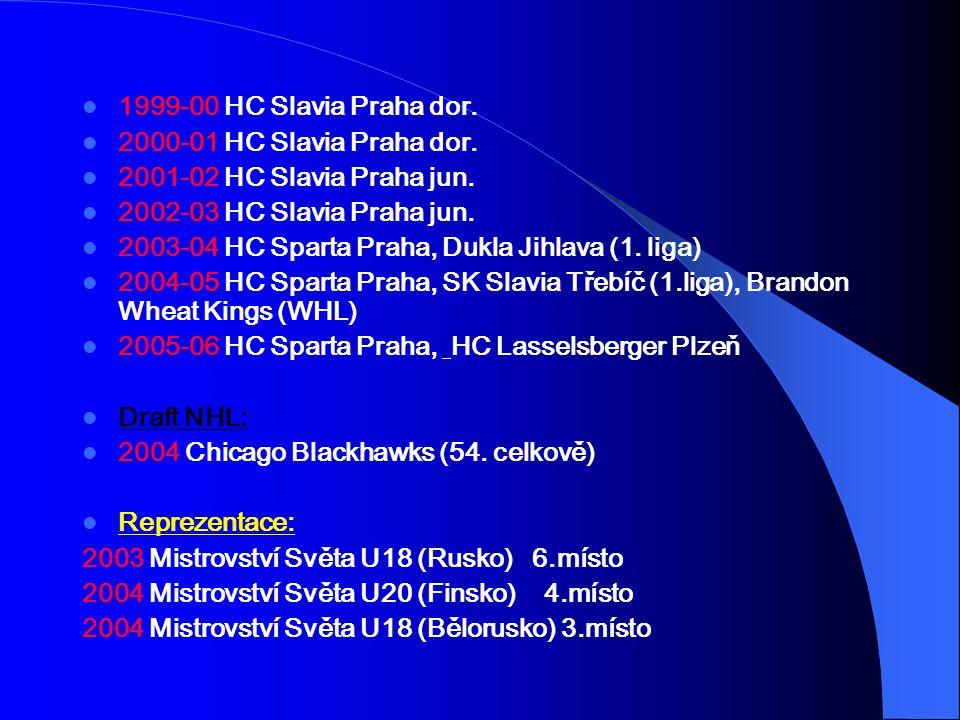 1999-00 HC Slavia Praha dor. 2000-01 HC Slavia Praha dor. 2001-02 HC Slavia Praha jun. 2002-03 HC Slavia Praha jun.