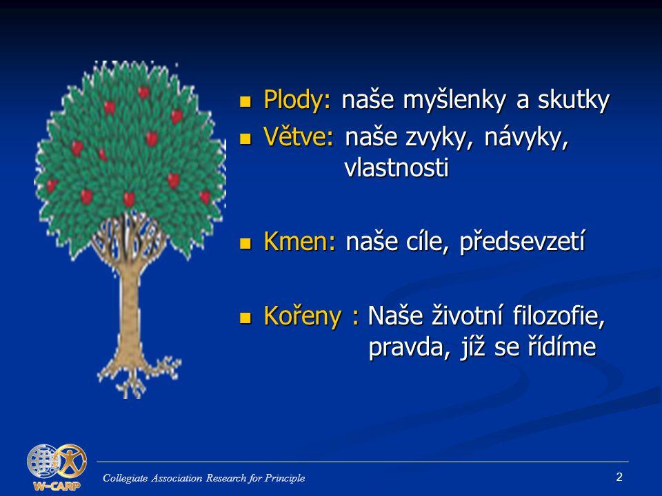 Plody: naše myšlenky a skutky Větve: naše zvyky, návyky, vlastnosti