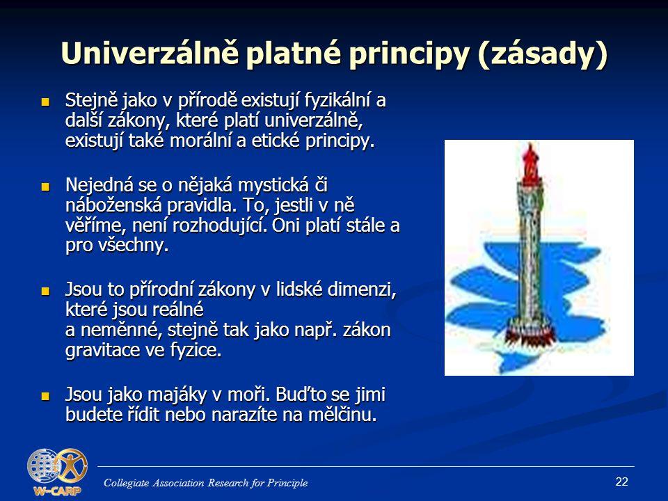 Univerzálně platné principy (zásady)