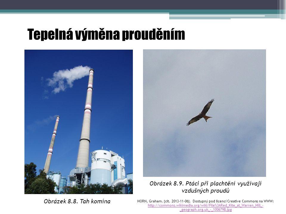 Obrázek 8.9. Ptáci při plachtění využívají vzdušných proudů