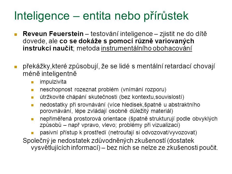 Inteligence – entita nebo přírůstek