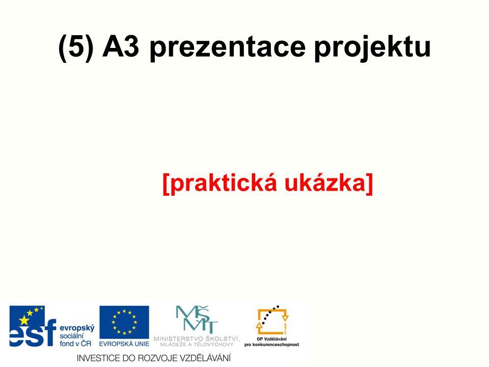 (5) A3 prezentace projektu
