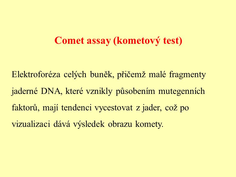 Comet assay (kometový test)
